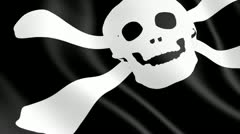 The pirate flag Stock Footage