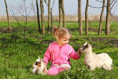 child and two little goats.JPG - stock photo