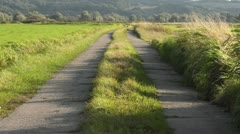 Agricultural road across flood meadows, Unteres Odertal National Park, Germany Stock Footage