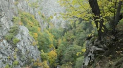 Autumnal mountain forest, Bode Valley Nature Reserve, Germany Stock Footage