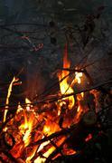 bonfire - stock photo