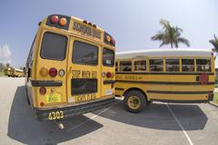 School busses Stock Photos