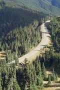 Olympic national park hurricane ridge Stock Photos