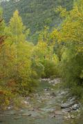 River arazas, ordesa national park - stock photo
