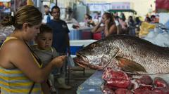 Mexican fish market mother child Stock Photos
