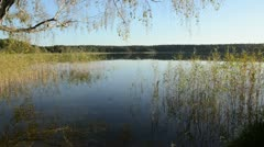 Lake Feissnecksee in autumn, Mueritz National Park, Germany Stock Footage