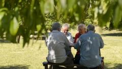 Active people, group of senior men playing cards and laughing - stock footage