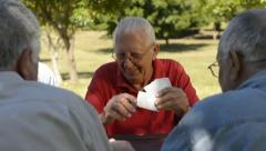 Active seniors, group of old friends playing cards at park Stock Footage