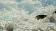 Clear rapid stream. Stock Footage