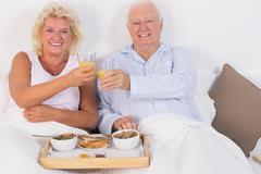 Stock Photo of Smiling aged couple toasting