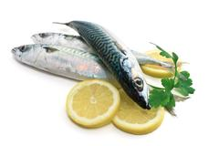 three mackerel with lemon and parsley - stock photo