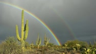 Stock Video Footage of Vibrant Unique Double Rainbow Over Arizona Cactus