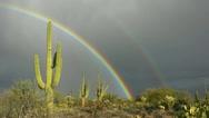 Vibrant Unique Double Rainbow Over Arizona Cactus Stock Footage