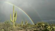 Rain Double Rainbow Clear Blue Skies Time Lapse Stock Footage