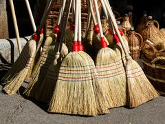 nature broom - stock photo