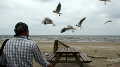 Man headscarf on head feed fly seagull gull bird background sea Stock Footage