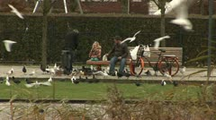 Griftpark, Birds and people, Utrecht Stock Footage