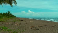 Beach at tortuguero national park in Costa Rica Stock Footage