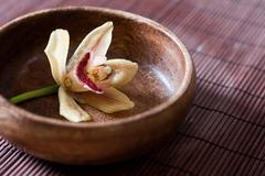 Flower orchid in a wooden bowl Stock Photos
