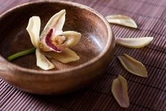 flower orchid in a wooden bowl - stock photo
