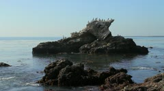 Rocky coast line, California Stock Footage
