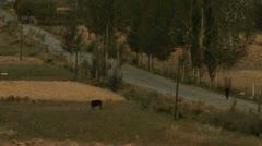 View on Roadside, Tajikistan Stock Footage