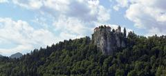 View on Bled castle, Slovenia - stock photo