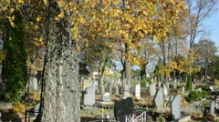 People care family grave beautiful autumn cemetery graveyard Stock Footage