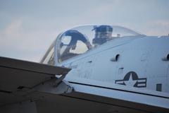 A-10 Warthog Thunderbolt Stock Photos