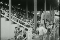 Audience applauding at rodeo - stock footage