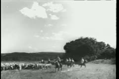 Stock Video Footage of Cowboys herding cattle on ranch