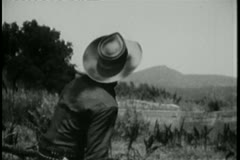 Rear view of cowboy releasing homing pigeon Stock Footage