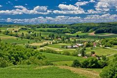 Kaunis vihreä maisema maisema keväällä Kuvituskuvat