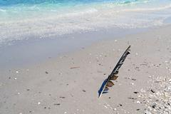 feather on the foreshore - stock photo