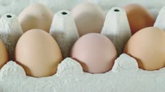 Ten brown eggs in cardboard  container spins closeup Stock Footage