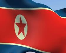 Flag of North Korea PAL Stock Footage