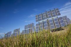 field of renewable green energy photovoltaic solar panels - stock photo