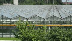greenhouse - stock footage
