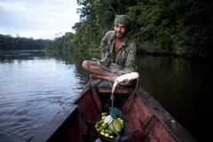 Riberinho kalastus, Rio amapari - Brasilia Kuvituskuvat