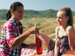 Girlfriends drinking wine on picnic, crane shot Stock Footage