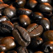 coffee beans closeup - stock photo