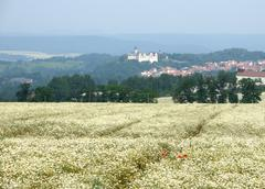 Pictorial summertime scenery in thuringia Stock Photos