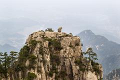 Natural monkey stone statue in yellow mountains Stock Photos