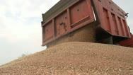 Stock Video Footage of Harvest 011