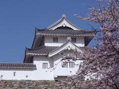 japanese castle in spring-time - stock photo