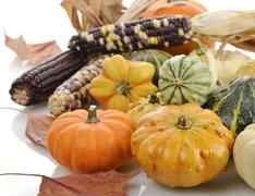 Mini pumpkins and indian corn Stock Photos