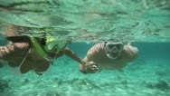 Stock Video Footage of couple doing snorkeling in caribbean sea