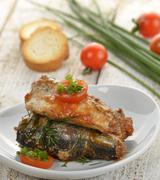sardines in tomato sauce - stock photo