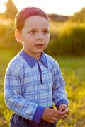 little boy in the meadow - stock photo