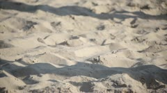 Shadows in the sand. Stock Footage